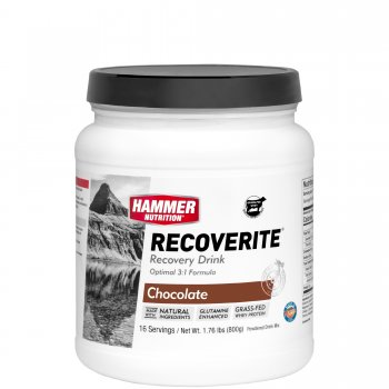 Hammer Nutrition Recoverite Recovery Drink *optimale 3:1 Formel*